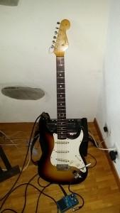 Manche Fender